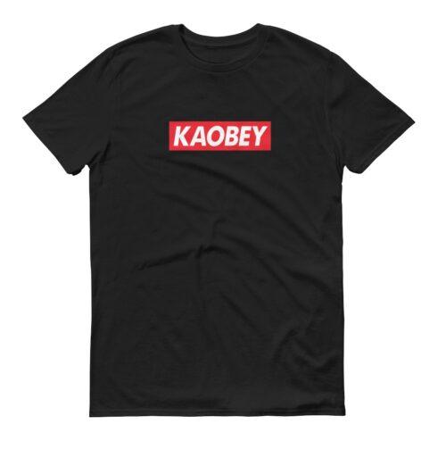 Kaobey Logo black mens t shirt singapore singlish casualwear